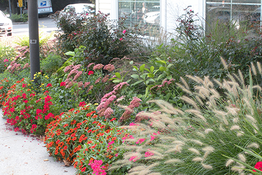 Post Office Garden (located at the Post Office on Hubbard Road)